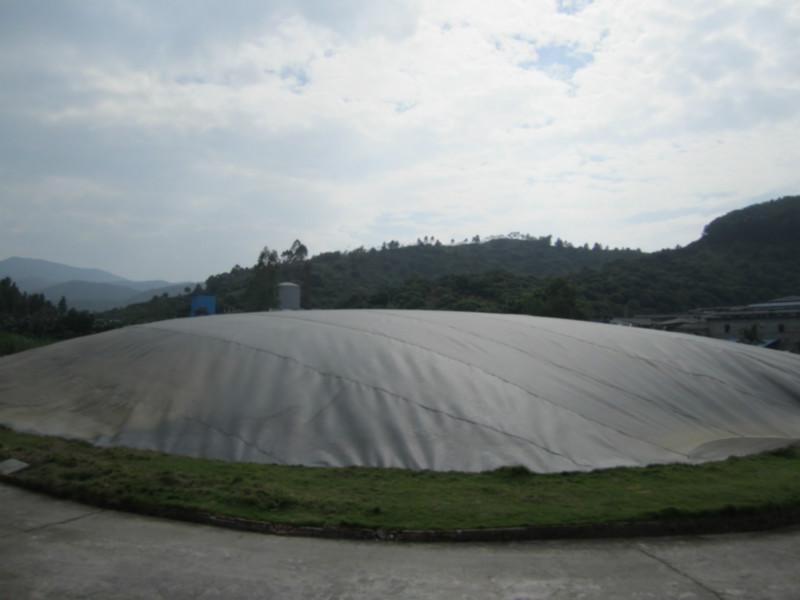 猪粪沼气池工程案例产品图片